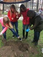 Посади дерево - зроби свій внесок у майбутнє!